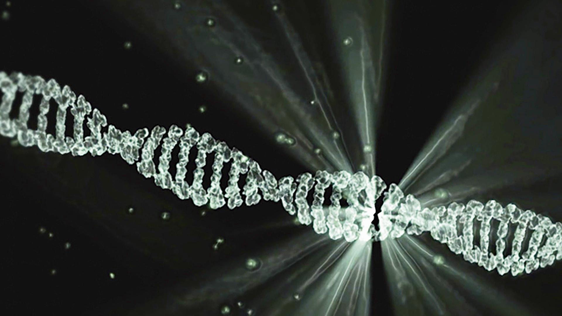 epigenetyka-czy-dieta-mozna-zmienic-geny