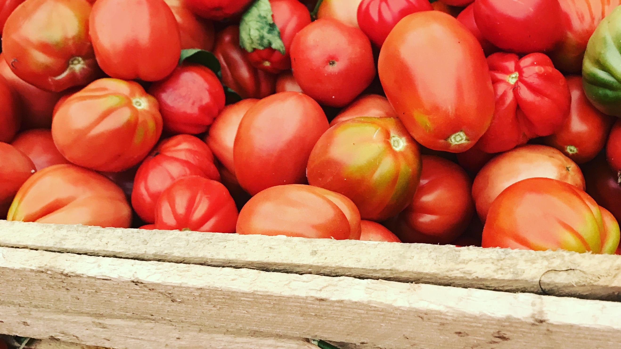 wloski-sos-pomidorowy