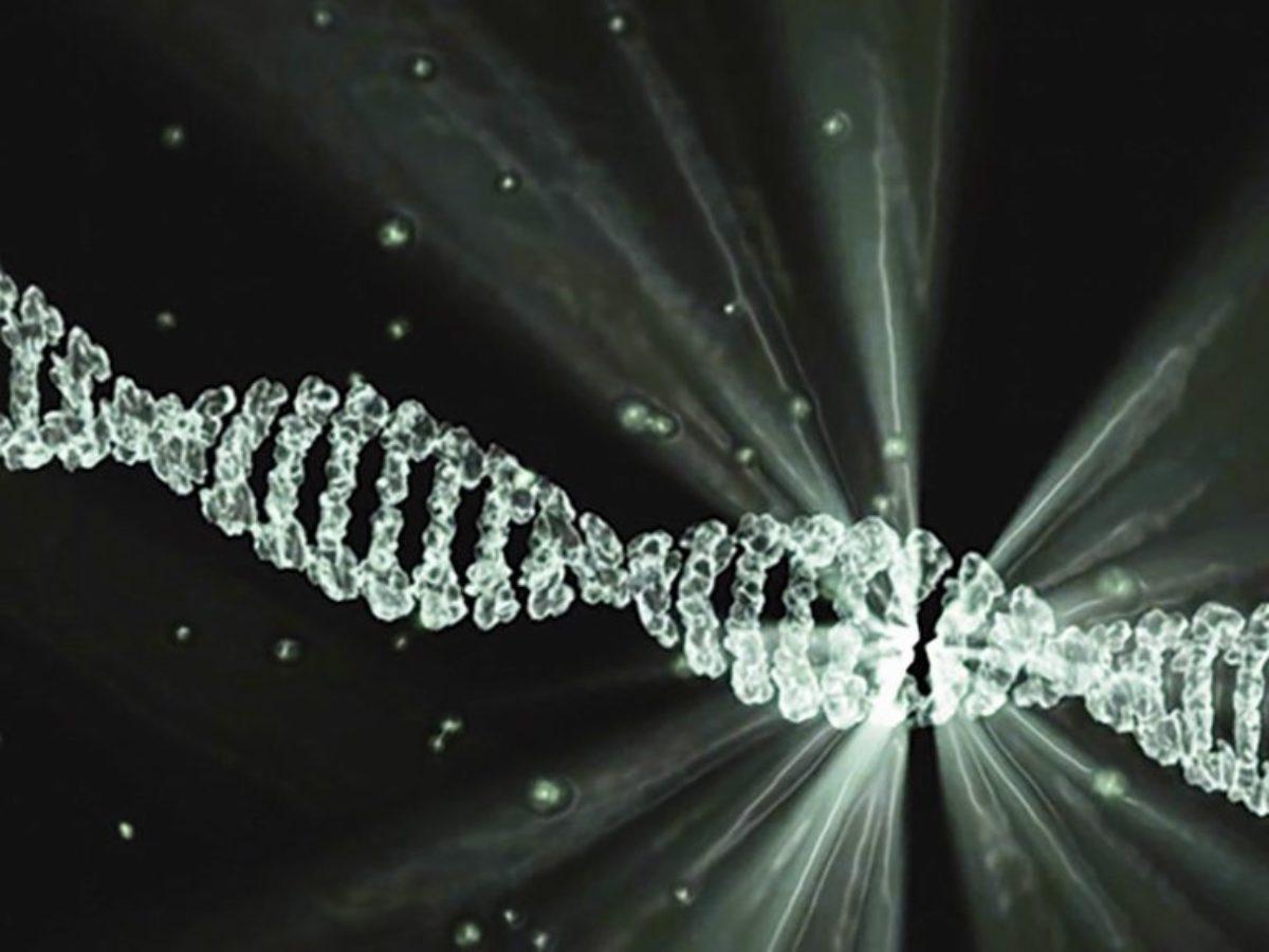 Epigenetyka